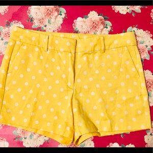 💜💐💜Ann Taylor Shorts Size 12💜💦🐞🌺